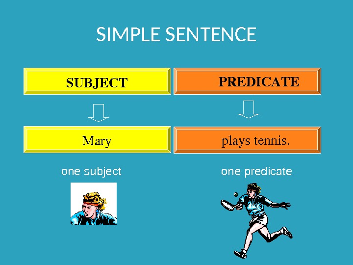 SIMPLE SENTENCE Mary playstennis. SUBJECT PREDICATE  one subject one predicate