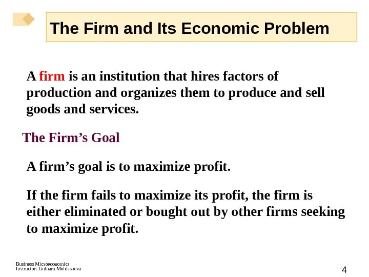 Business Microeconomics Instructor: Gulnara Moldasheva 4 The Firm and Its Economic Problem A firm is an