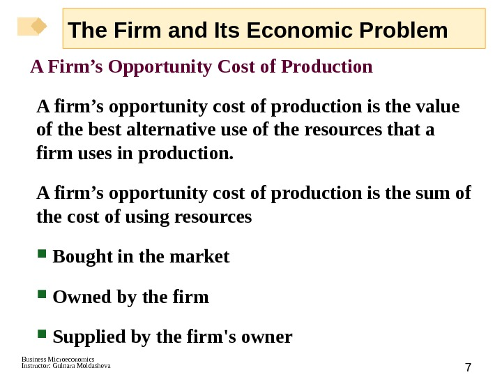 Business Microeconomics Instructor: Gulnara Moldasheva 7 A Firm's Opportunity Cost of Production A firm's opportunity cost