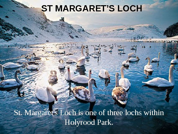 ST MARGARET'S LOCH St. Margaret's Loch is one of three lochs within Holyrood Park.