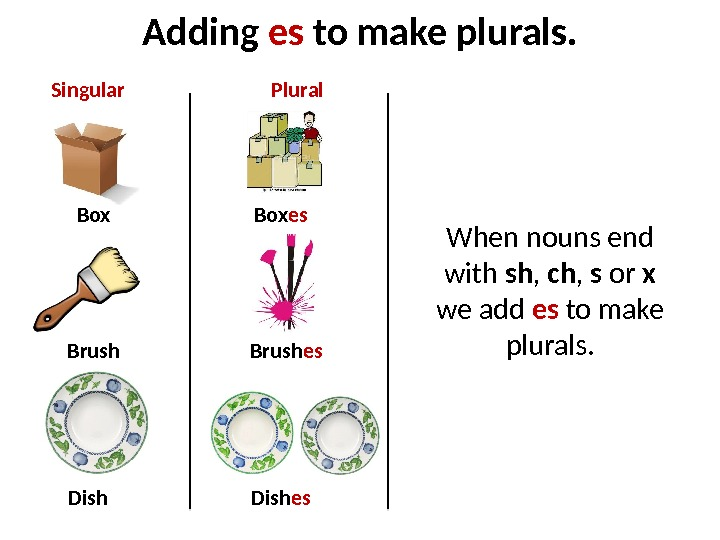 Adding es to make plurals. Box Brush Dish Box es Brush es Dish es. Singular Plural