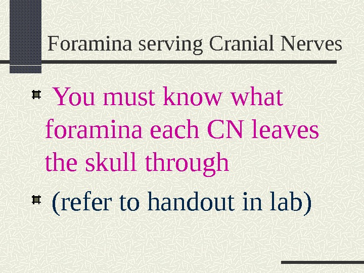 Foramina serving Cranial Nerves  You must know what foramina each CN leaves the skull through