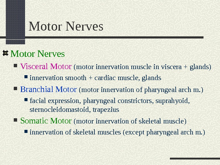 Motor Nerves Visceral Motor  (motor innervation muscle in viscera + glands) innervation smooth + cardiac
