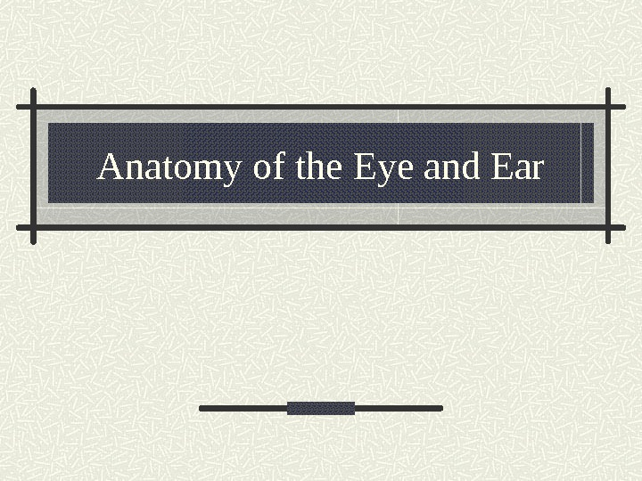 Anatomy of the Eye and Ear