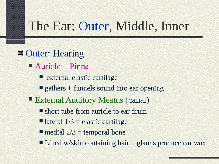 The Ear:  Outer , Middle, Inner Outer:  Hearing Auricle = Pinna  external elastic