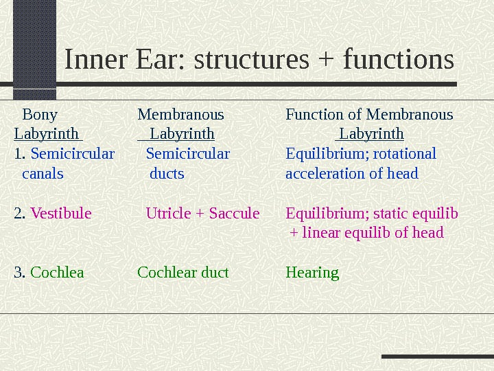 Inner Ear: structures + functions  Bony Membranous Function of Membranous Labyrinth 1.  Semicircular Equilibrium;
