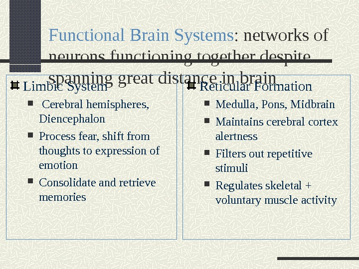 Functional Brain Systems : networks of neurons functioning together despite spanning great distance in brain Limbic