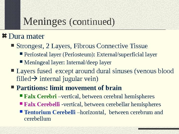 Meninges (continued) Dura mater Strongest, 2 Layers, Fibrous Connective Tissue Periosteal layer (Periosteum): External/superficial layer Meningeal