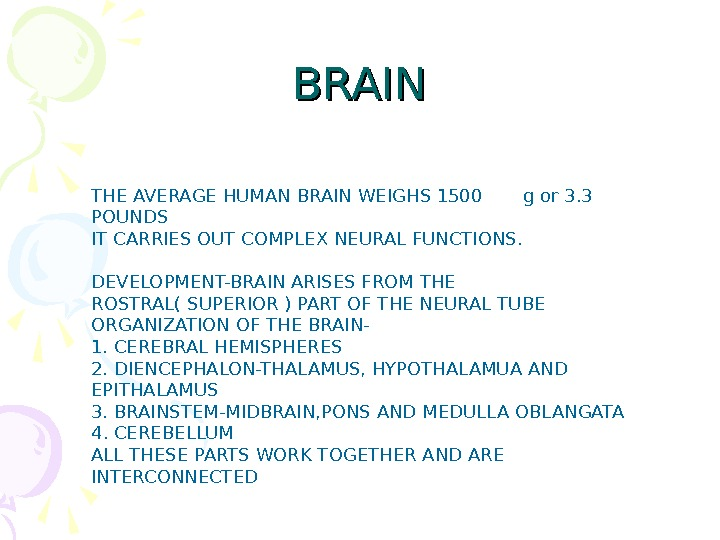 BRAIN THE AVERAGE HUMAN BRAIN WEIGHS 1500 g or 3. 3 POUNDS IT CARRIES OUT COMPLEX