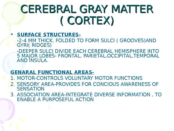 CEREBRAL GRAY MATTER ( CORTEX) • SURFACE STRUCTURES- -2 -4 MM THICK, FOLDED TO FORM SULCI