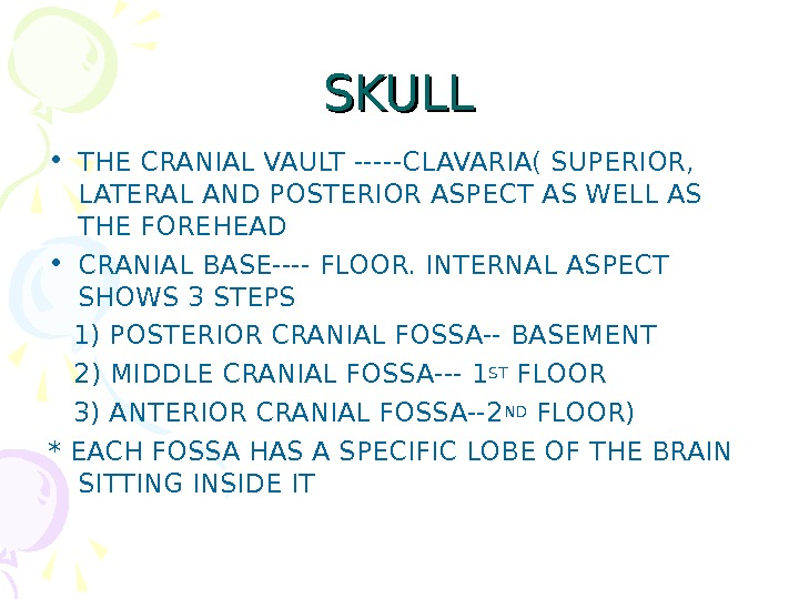 SKULL • THE CRANIAL VAULT -----CLAVARIA( SUPERIOR,  LATERAL AND POSTERIOR ASPECT AS WELL AS THE