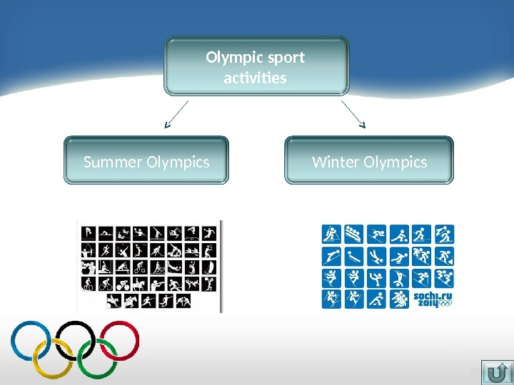 Olympic sport activities Winter Olympics. Summer Olympics