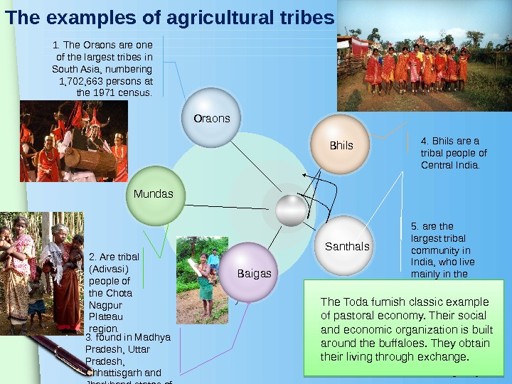 www. themegallery. com. The examples of agricultural tribes Santhals 4. Bhils are a tribal people of