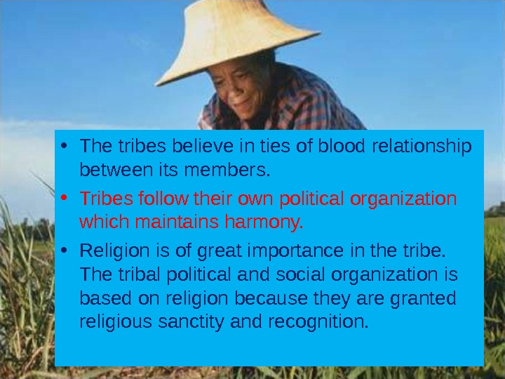 • The tribes believe in ties of blood relationship between its members.  • Tribes