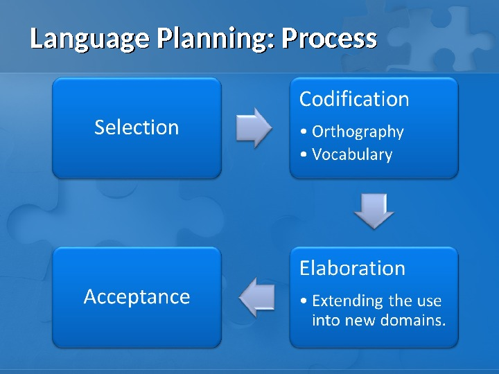 Language Planning: Process