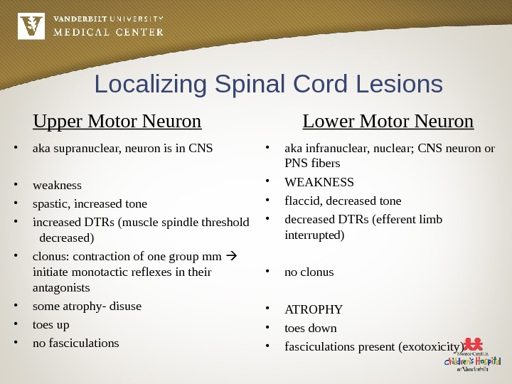 Localizing Spinal Cord Lesions Upper Motor Neuron • aka supranuclear, neuron is in CNS • weakness