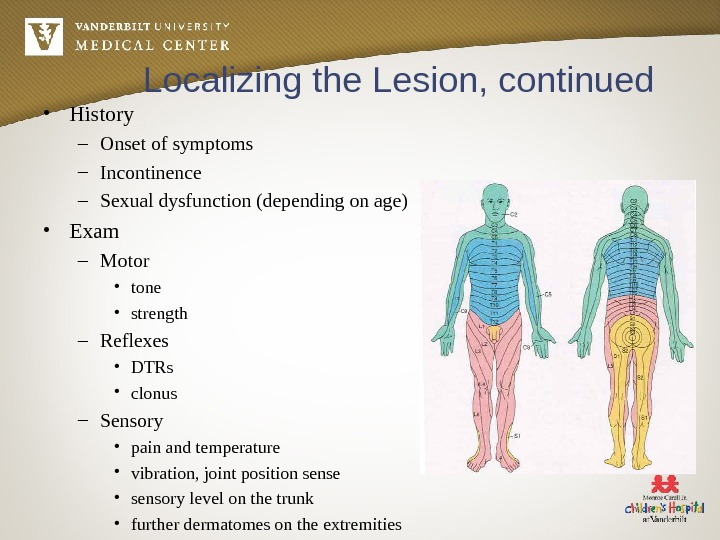 Localizing the Lesion, continued • History – Onset of symptoms – Incontinence – Sexual dysfunction (depending