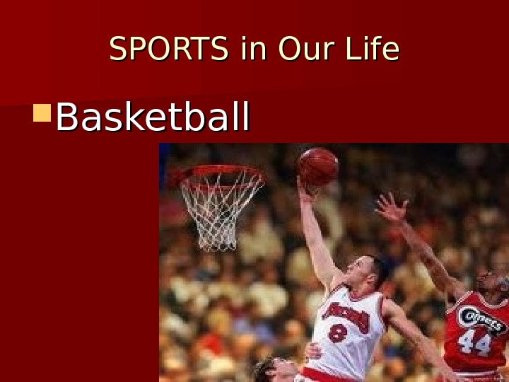 SPORTS in Our Life Basketball