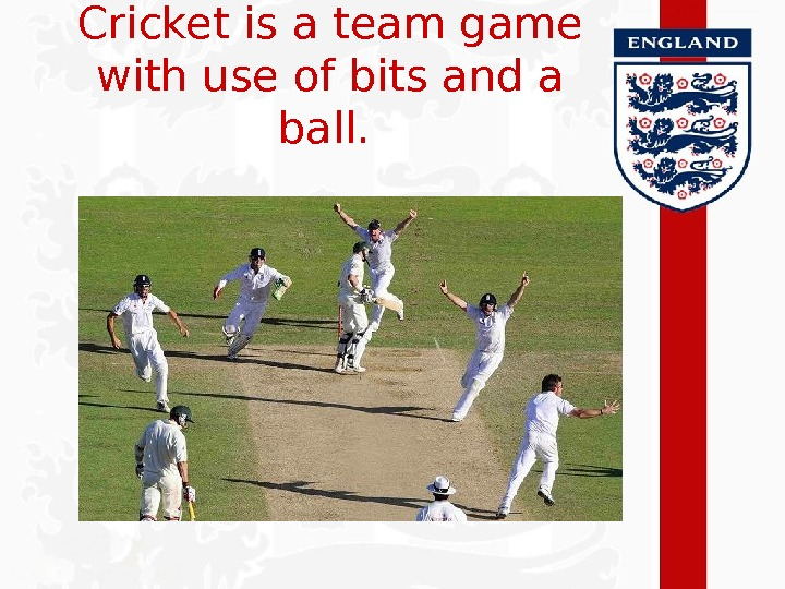 Cricket is a team game with use of bits and a ball.