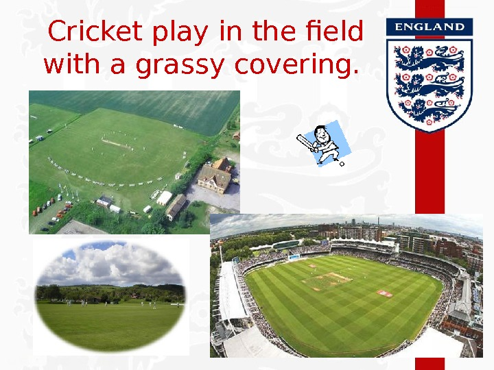 Cricket play in the field with a grassy covering.