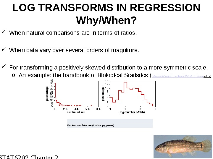STAT 6202 Chapter 2 2012/2013 23 LOG TRANSFORMS IN REGRESSION Why/When?  When natural comparisons