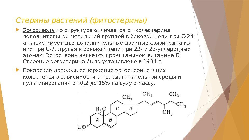 Эргостерин