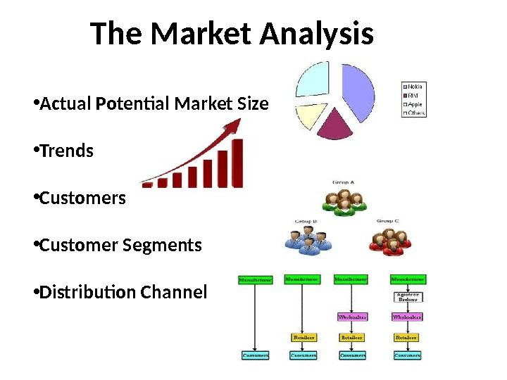 The Market Analysis • Actual Potential Market Size • Trends • Customer Segments •