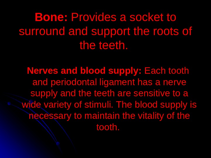 Bone:  Provides a socket to surround and support the roots of the teeth.