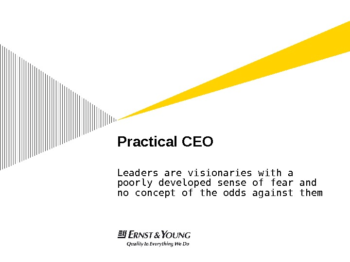 Practical CEO Leaders are visionaries with a poorly developed sense of fear and no concept of