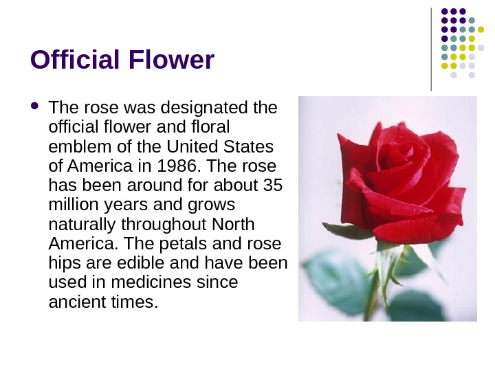 Official Flower The rose was designated the official flower and floral emblem of the United States