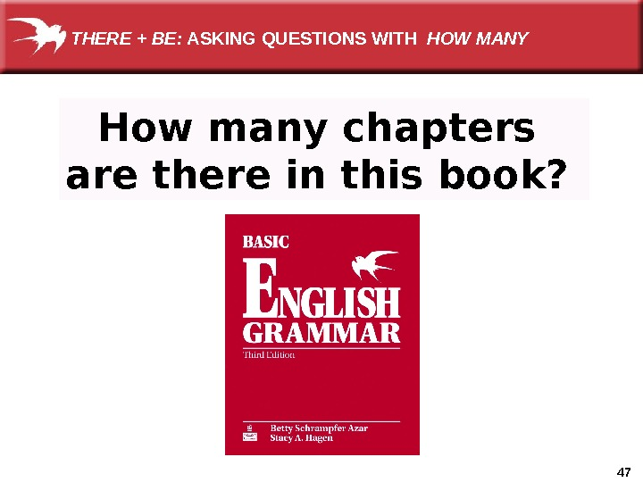 47 How many chapters are there in this book?  THERE + BE:  ASKING QUESTIONS