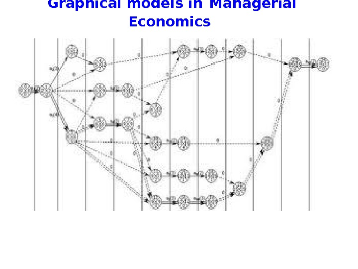 Graphical models in  Managerial Economics
