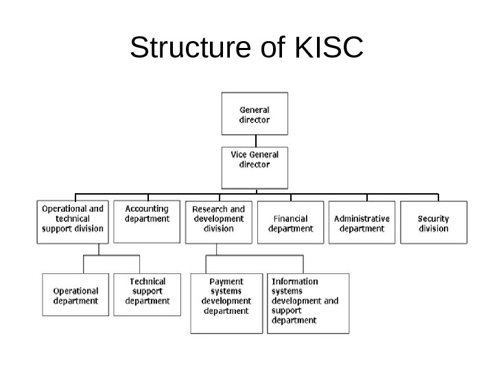 Structure of KISC