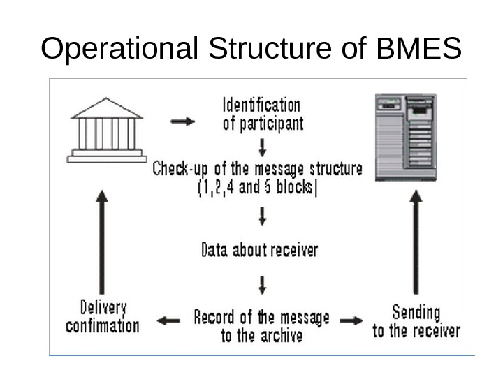 Operational Structure of BMES