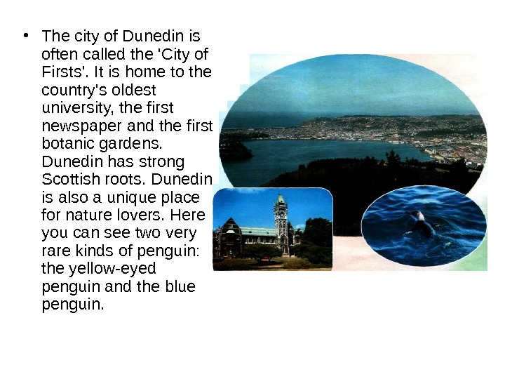 • The city of Dunedin is often called the 'City of Firsts'. It is