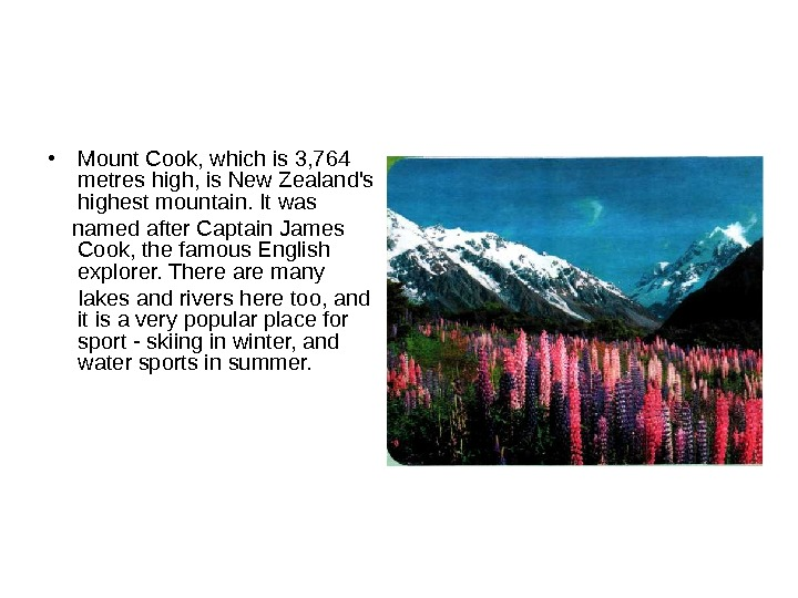 • Mount Cook, which is 3, 764 metres high, is New Zealand's highest mountain.