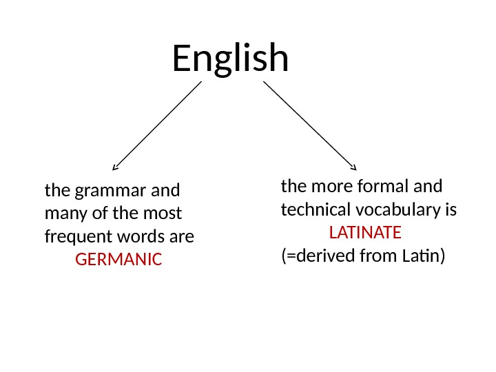 English the grammar and many of the most frequent words are   GERMANIC the more
