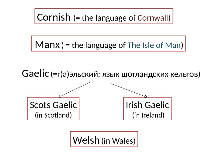 Cornish (=  the language of Cornwall )  Manx  ( = the language of