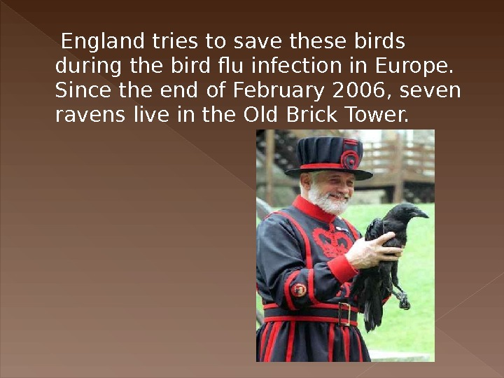 England tries to save these birds during the bird flu infection in Europe.  Since