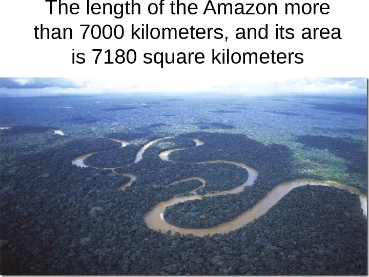 The length of the Amazon more than 7000 kilometers, and its area is 7180