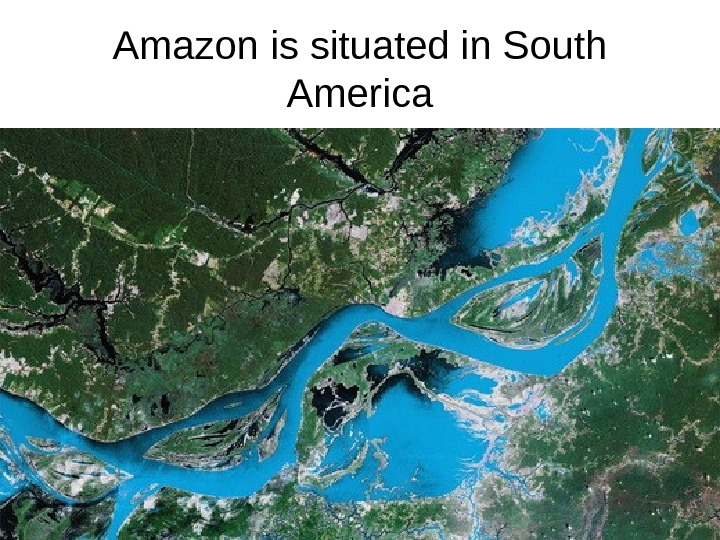 Amazon is situated in South America