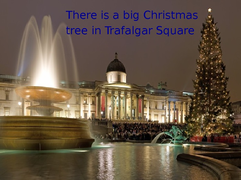 There is a big Christmas tree in Trafalgar Square