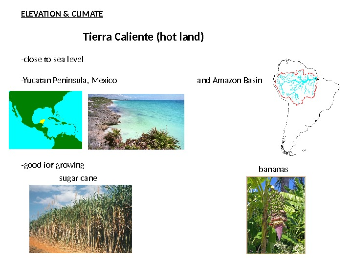 ELEVATION & CLIMATE Tierra Caliente (hot land) -close to sea level -Yucatan Peninsula, Mexico and Amazon