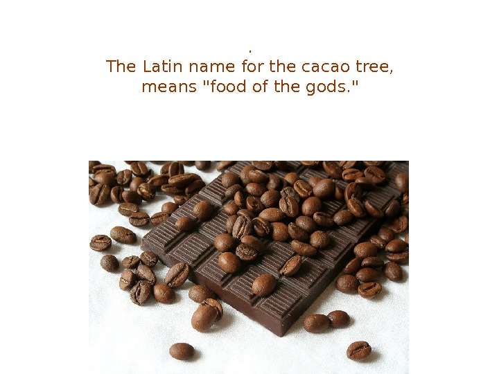 .  The Latin name for the cacao tree,  means food of the gods.