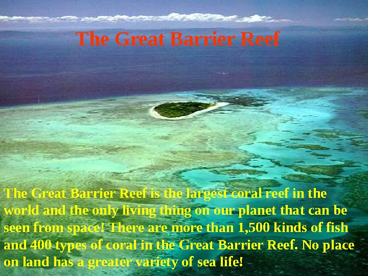 The Great Barrier Reef is the largest coral reef in the world and the only living