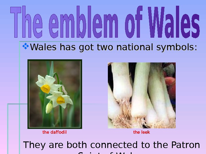Wales has got two national symbols : : They are both connected to the Patron