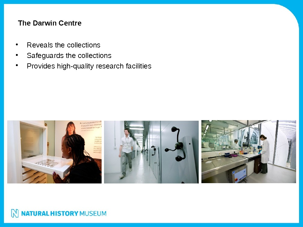 The Darwin Centre • Reveals the collections • Safeguards the collections • Provides high-quality research facilities
