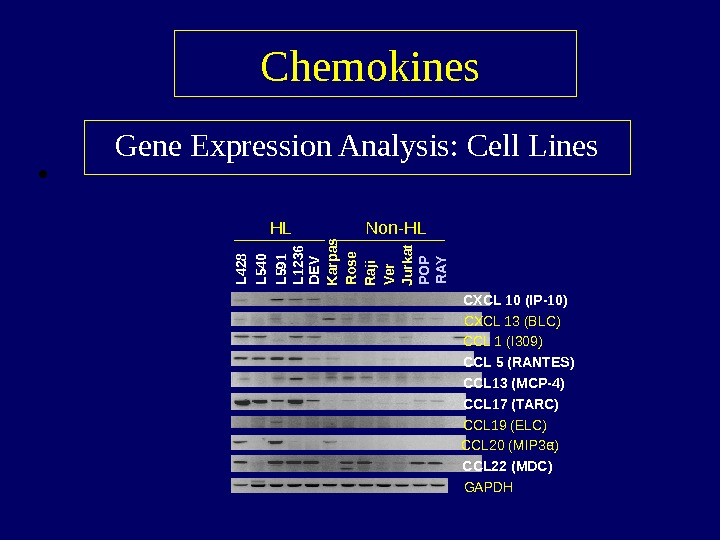 •  Chemokines  Gene Expression Analysis: Cell Lines α )CXCL 10 (IP-10) CXCL 13