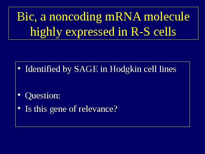 Bic, a noncoding m. RNA molecule highly expressed in R-S cells • Identified by