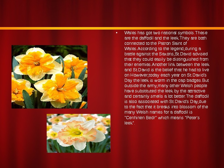 • Wales has got two national symbols. These are the daffodil and the leek. They
